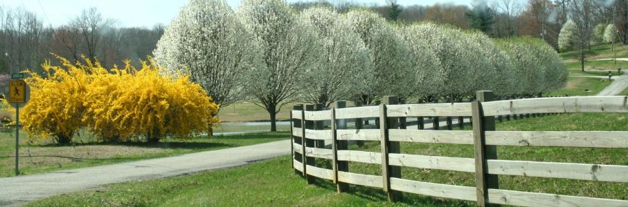 Spring In Scott County